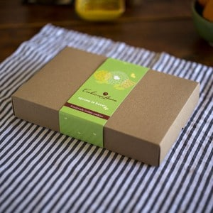 CCA-Spring-Box-500px