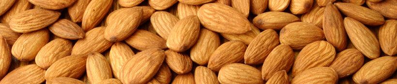 almonds ricciarelli
