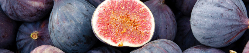 figs for cuccidati cookies